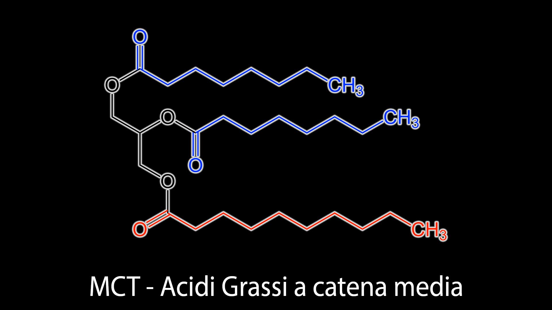 MCT Acidi grassi a catena media